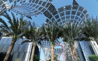 الصورة: «شوبا»: استثمارات جديدة تعزّز الطلب تزامناً مع «إكسبو 2020 دبي»