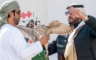 الصورة: 10 فرق في الجولة الأولى من «الإمارات للصيد بالصقور»