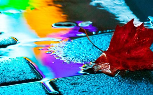 الصورة: بالصور.. انعكاس الضوء على تجمعات الأمطار