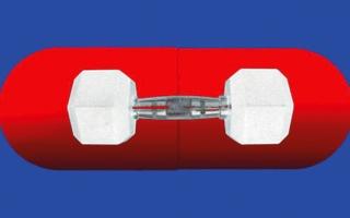الصورة: بروتين يمنح اللياقة دون تمارين رياضية
