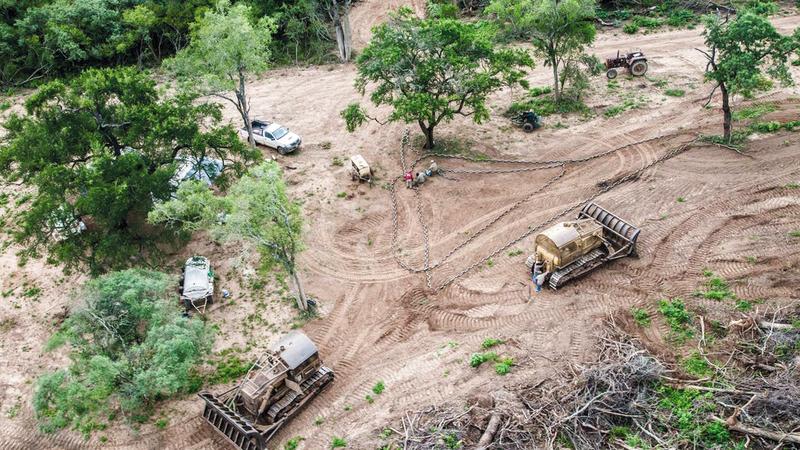مساحات شاسعة تمت إزالتها من غابات الأمازون من أجل زراعة الصويا.  غيتي