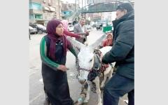 الصورة: مصر.. «فيس بوك» يعيد لــ «سيدة الكارو» عربتها المصادرة