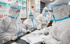 الصورة: خبراء: فيروس «كورونا» ليس من صنع الصينيين