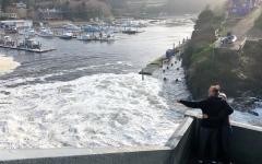 الصورة: فيضانات في نيوزيلندا تجبر الآلاف على إخلاء منازلهم