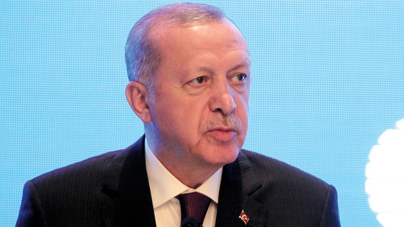 كان أردوغان سعيداً لحصوله على بعض الدعم في نهاية المطاف. أ.ب