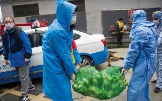 الصورة: حكومات العالم تكثف الاستعدادات لمواجهة «كورونا»
