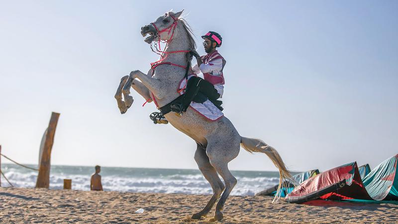 فرسان «القافلة الوردية» اختتموا محطات أم القيوين على شاطئ كايت. من المصدر