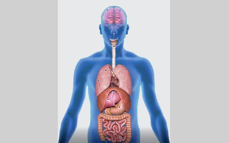 الصورة: إنفوغرافيك: فيروس «كورونا».. الإصابة والوقاية