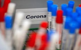 """الصورة: أداة اختبار منزلية بسيطة لـ""""كورونا"""" خلال أيام على """"أمازون"""" وفي الصيدليات"""
