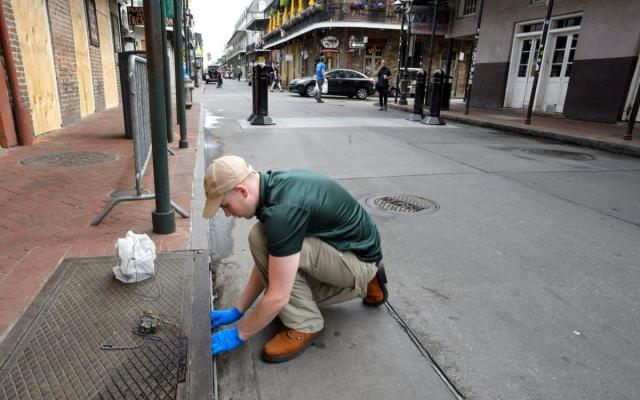 """الصورة: من تبعات """"كورونا"""".. الجرذان تجتاح الشوارع الخالية في """"نيو أورليانز"""""""