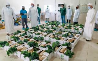 الصورة: «شروق» توزّع خضراوات عضوية مجاناً على الأسر المتعففة