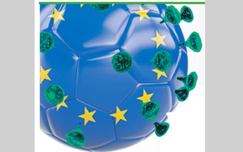 الصورة: بالغرافيك.. رغم «كورونا».. كبار أوروبا يرسمون خارطة عودة دوريات الكرة في القارة العجوز