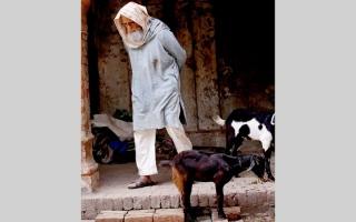 الصورة: فيلم أميتاب باتشان الجديد على «أمازون» للبث