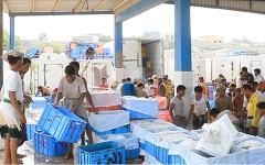 الصورة: الإمارات تدعم 28 ألف صياد في الساحل الغربي لليمن