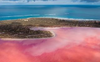 الصورة: بالصور.. البحيرة الوردية في أستراليا