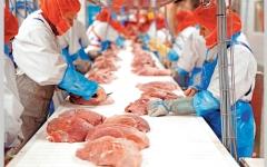 الصورة: مصانع تعليب اللحوم في أوروبا أصبحت بؤراً لنشر «كورونا»