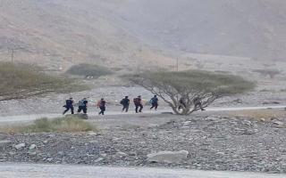 الصورة: «الهايكنج» وجمع العسل وتسلّق الجبال.. هوايات تهدّد الحياة