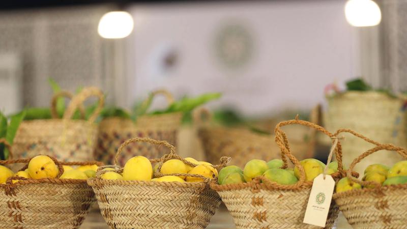 ازدان مهرجان ليوا للرطب بمنتجات زراعية ومحاصيل محلية فرضت نفسها بجودتها التي تنافس أفضل المنتجات الزراعية المستوردة.   من المصدر