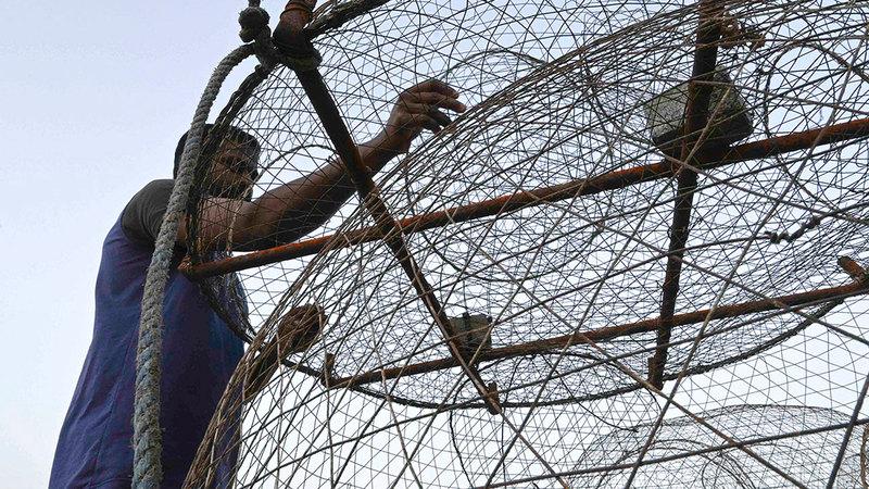 العمال الآسيويون ثمّنوا مبادرة الصيادين المواطنين. من المصدر