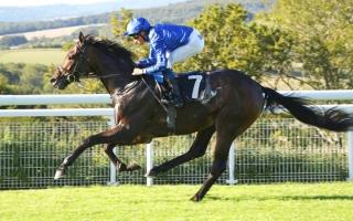 الصورة: «فولكان ستار» يتحدى نخبة الخيول على لقب «بري هوركات» في فرنسا اليوم
