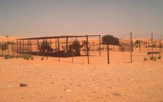 الصورة: بلدية مدينة الذيد تحرر 21 إنذاراً وتزيل 6 عزب عشوائية خلال النصف الأول من العام الجاري