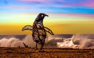 """الصورة: بالصور.. شواطئ استراليا تزدان بتماثيل خشبية لإضفاء المرح بزمن """"كورونا"""""""