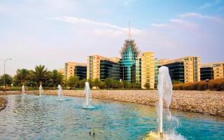 الصورة: «دبي للسيليكون» تطلق تطبيقاً للخدمات والإبلاغ عن المشكلات