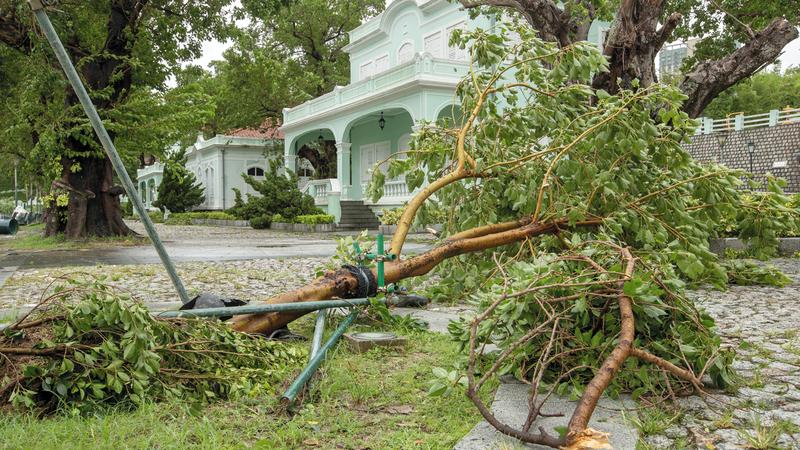 حطام وأشجار اقتلعتها العاصفة في أحد الشوارع. إي.بي.إيه