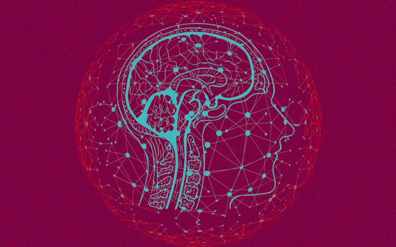 الصورة: بالفيديو.. التحكم بالأجهزة عبر شريحة مزروعة بالدماغ