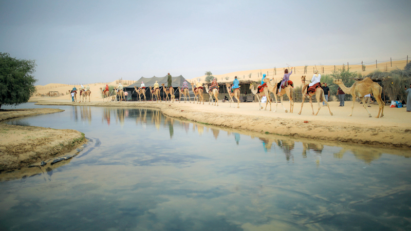 «دبي للسياحة» أكدت أنه يمكنها تغيير فئة المخيم بناء على الخدمات المقدمة.  من المصدر