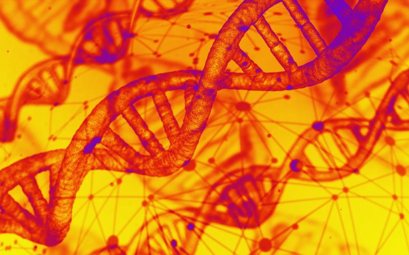 الصورة: بالفيديو.. التعديل الوراثي وأمل القضاء على بعض الأمراض
