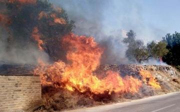 الصورة: الحرائق تتواصل في سورية.. النيران تحاصر بعض القرى وتلتهم مساحات شاسعة