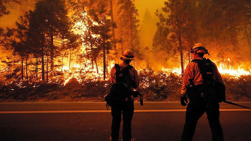 ترامب يرفض الأساسيات التي تحافظ على البيئة حتى وسط الحرائق المرعبة التي تعصف بالغابات في غرب الولايات. أرشيفية
