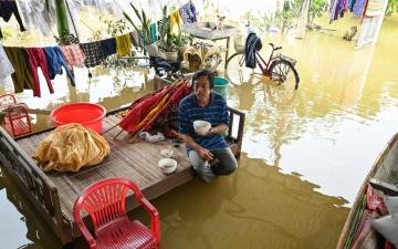 الصورة: فيضانات وعواصف وانهيارات أرضية تقتل 50 شخصاً في فيتنام