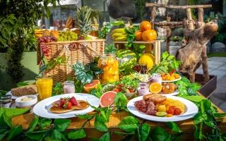 الصورة: تناول الطعام مع حيوان الكسلان في «ذا جرين بلانيت»