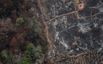 الصورة: حرائق غير مسبوقة بسبب الجفاف تلتهم مناطق كاملة في أميركا الجنوبية