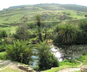 موسوعة شاملة عن المحميات الطبيعية - حصريا على منتدى واحة الإسلام - صفحة 2 Image