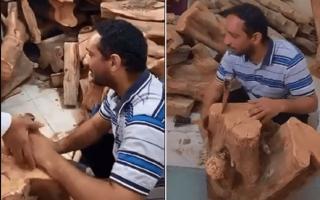 الصورة: فيديو.. حطاب سعودي كفيف يتصدرالترند بسبب مهنته الخطرة