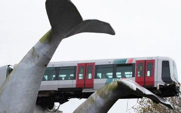 الصورة: بالفيديو.. مجسم ذيل حوت عملاق يحمي قطاراً من كارثة في هولندا