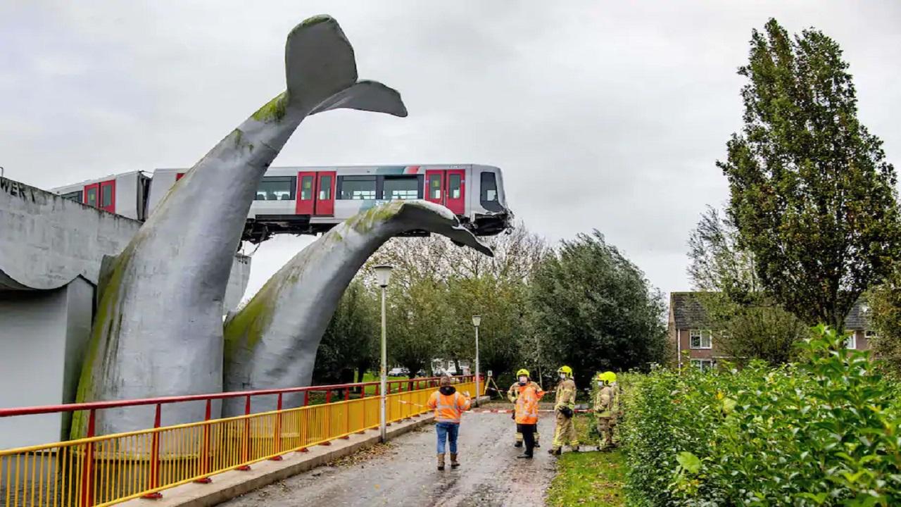 مجسم ذيل الحوت أنقذ القطار. فوكس نيوز
