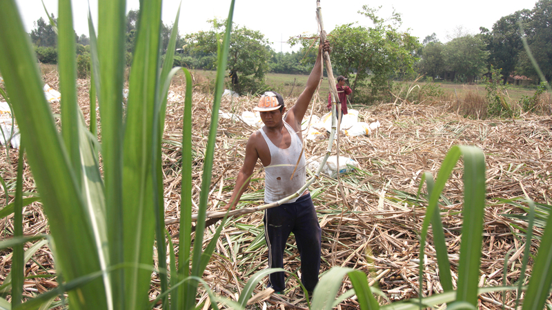 أحد العمال في قرية تشيتشيغالبا. غيتي