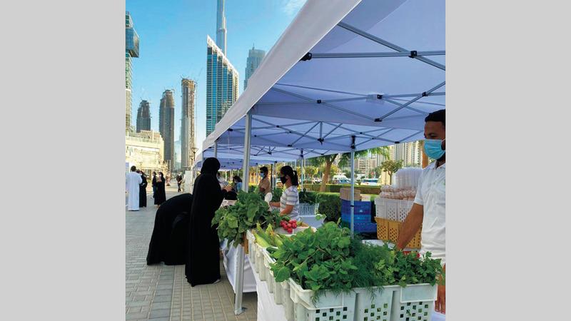 الشباب الإماراتي قادر على رفد سوق الأغذية بمنتجات منافسة بقوة وجذب المستهلكين لشرائها. من المصدر