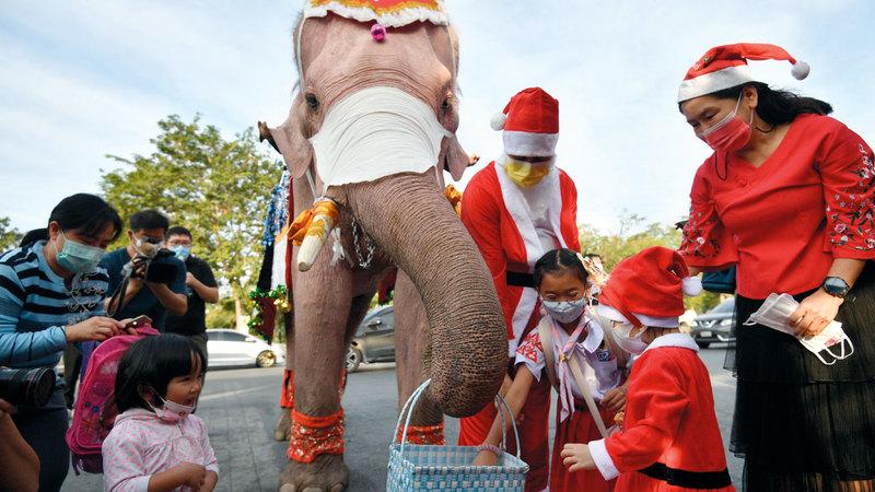 فيلة تقدّم كمامات إلى الطلبة في سلة.   رويترز
