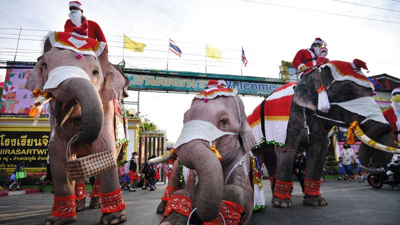 فيلة في إحدى مدارس تايلاند ترتدي زي بابا نويل وتوزّع الكمامات على الطلبة.  رويترز