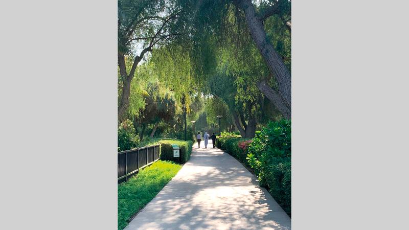 الحديقة أطلقت «البطاقة» مع بداية العام الجديد. من المصدر