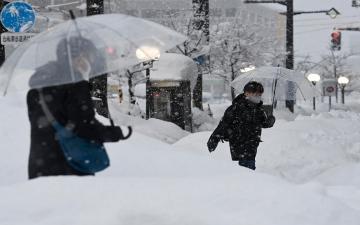 الصورة: الثلوج تقتل 8 أشخاص وتصيب العشرات في اليابان