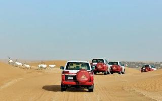 الصورة: %60 من زوّار دبي الدوليين يقبلون على رحلات «سفاري» الصحراوية