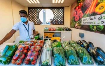 الصورة: مهرجان الشيخ زايد.. «واحة خضراء» تروي للزوّار مسيرة مباركة