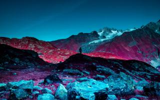 الصورة: بالصور.. لقطات من الطبيعة بالأشعة تحت الحمراء