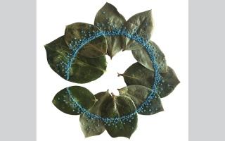 الصورة: بالصور.. فن التطريز على أوراق النباتات